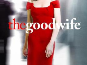 傲骨贤妻第四季/全集The Good Wife(4)